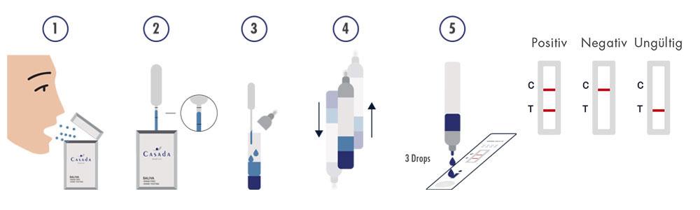 Casada Speichel-Antigen-Test Anwendung