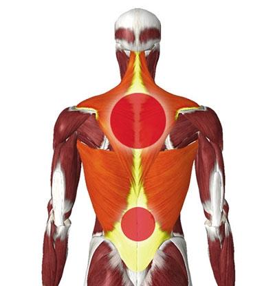 Körper und Massagepunkte